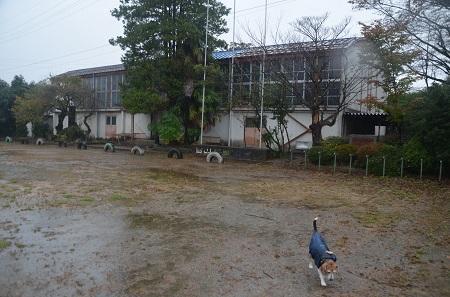 20191025穴山小学校05