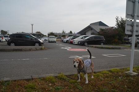 20191103道の駅 庄和03