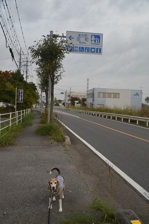 20191103道の駅 庄和02