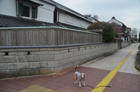 20191103粕壁宿12