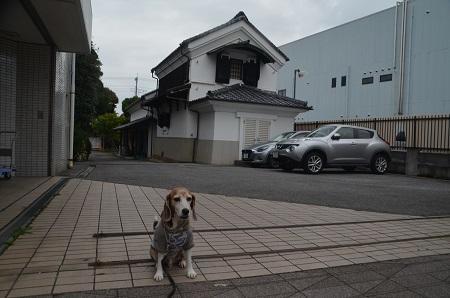 20191103粕壁宿07