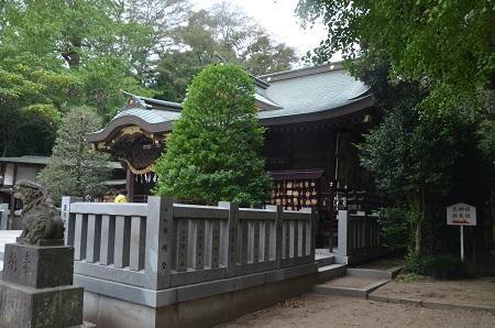 20191103春日部八幡神社18