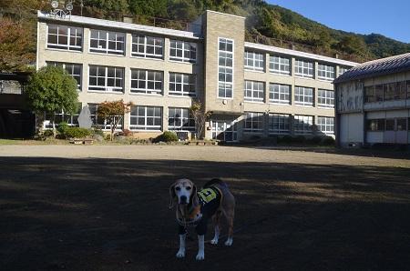 20191107笹子小学校07