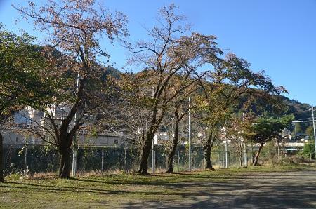 20191107笹子小学校21