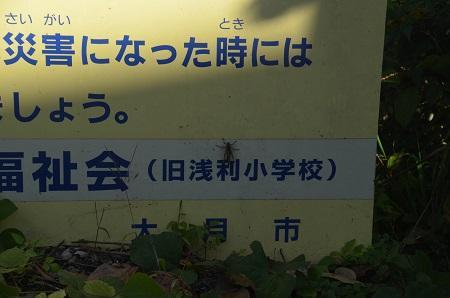 20191107浅利小学校05