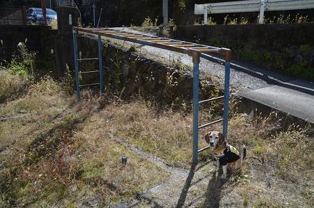 20191107上和田小学校16