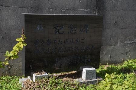 20191107瀬戸小学校09