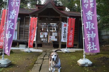 20191111冨里香取神社07