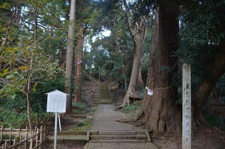 20191111東金日吉神社03