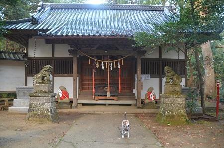 20191111東金日吉神社10