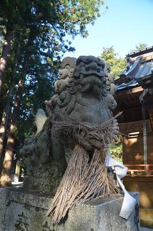 20191116愛宕神社26