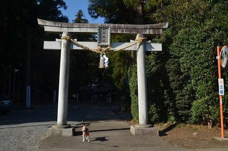 20191116六所神社02