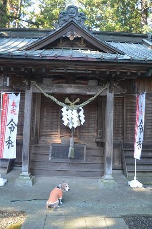 20191116六所神社12