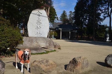 20191116合気神社02