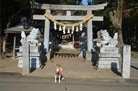 20191116羽梨山神社02
