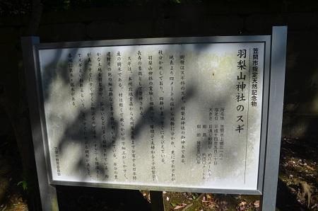 20191116羽梨山神社18