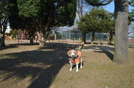 20191116旧・友部小学校跡05