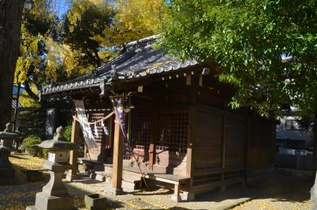 20191120栗原氷川神社11
