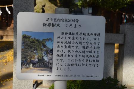 20191120栗原氷川神社28