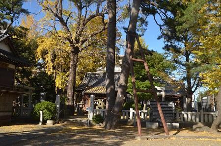 20191120栗原氷川神社27
