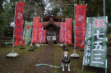 20191202冨里香取神社05