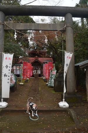 20191202冨里香取神社02