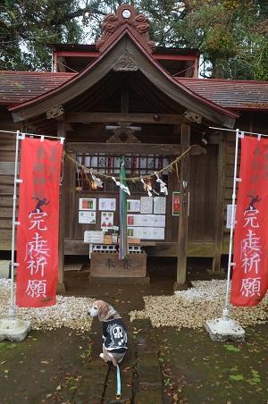 20191202冨里香取神社08