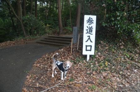 20191202山田貴船神社01