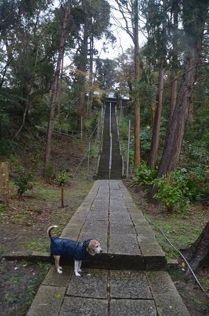 20191202宮谷八幡神社05