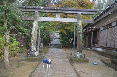 20191202宮谷八幡神社03