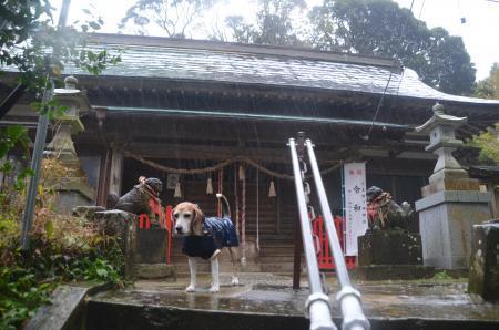 20191202宮谷八幡神社08