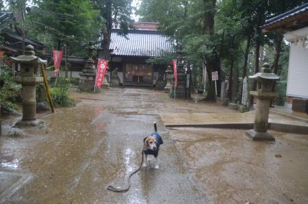 20191202東金日吉神社06