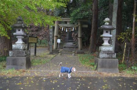 20191202東金日吉神社01