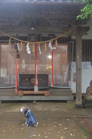 20191202東金日吉神社10