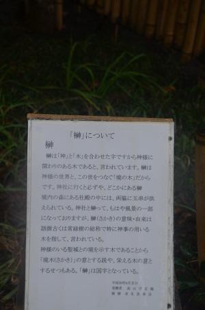 20191202求名熊野神社11