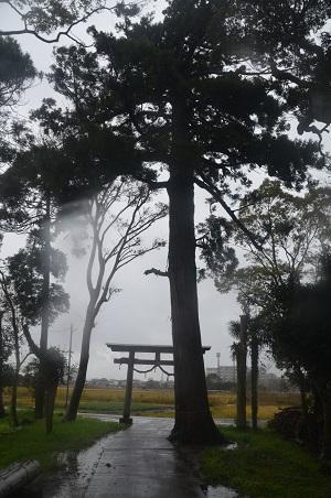 20191202求名熊野神社16
