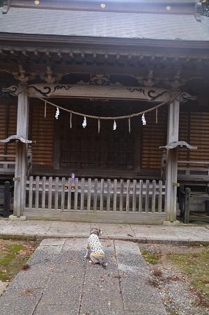20191206木内大神19