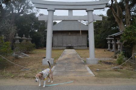 20191206椿神社01