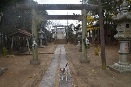 20191206水神社02