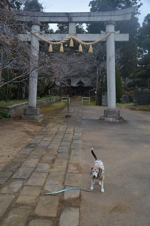 20191206松山神社01