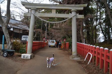 20191221麻賀多神社02