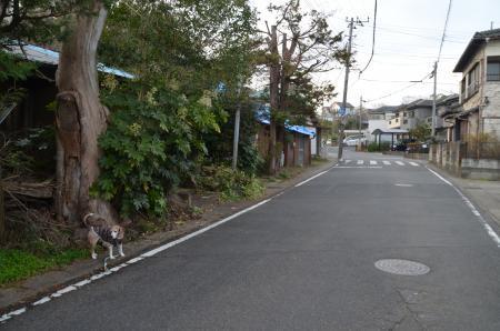 20191224うるし坂05