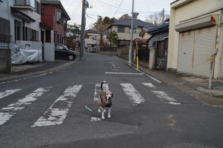 20191224うるし坂04