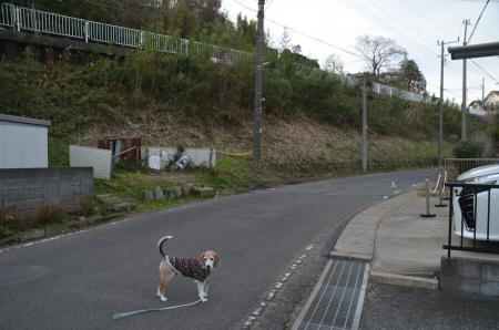 20191224うるし坂09