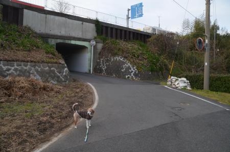 20191224うるし坂16