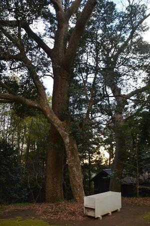 20191225駒形神社14