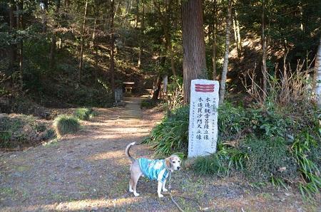 20200104稲田神社奥の院04