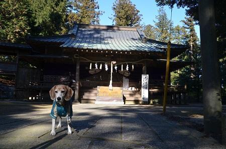 20200104稲田神社奥の院18