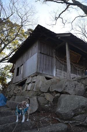 20200104佐志納神社06