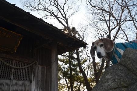 20200104佐志納神社11